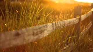 UNER Feat. Kafele Bandele - Trumpets & Flowers (Original Mix)