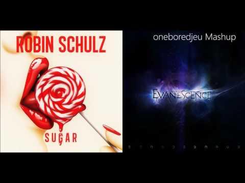 You Want Sugar - Robin Schulz vs. Evanescence (Mashup)