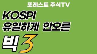 유일하게 안오른 업종 & 대형주 빅3  feat…