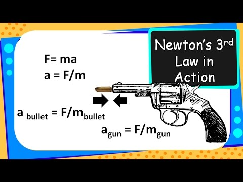 science newton s third law of motion action reaction in real