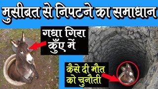 Best inspirational video (गधे ने दी मौत को चुनती) Motivational Stories, Hindi Kahaniya ,moral Story