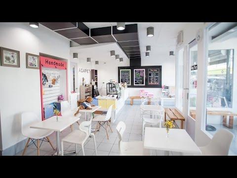 Agapet Dog Hotel and Cafe - VIP Dog Hotel & Cafe