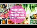 What I Have Been Eating: Fibroids, Hair Loss, & Anemia | By: What Chelsea Eats