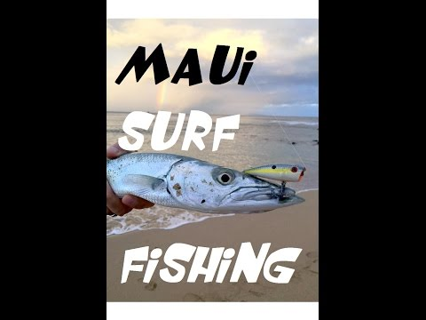 Fun Maui Surf Fishing On Light Line