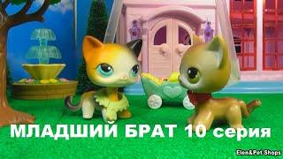 LPS МЛАДШИЙ БРАТ 10  серия
