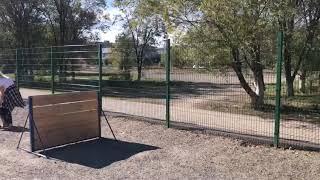 В Караганде открылась площадка для выгула собак