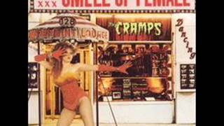 The Cramps - Psychotic Reaction