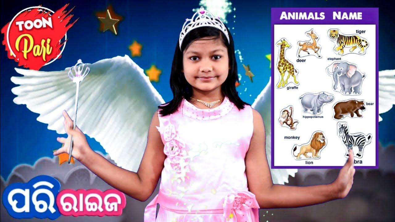 Pari Raija ( Toon Pari ) - Learn Animals Names and Sounds | Odia Learning Videos ( Odia Cartoons )
