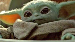 Todo Lo Que Sabemos Sobre La Especie Del Bebé Yoda