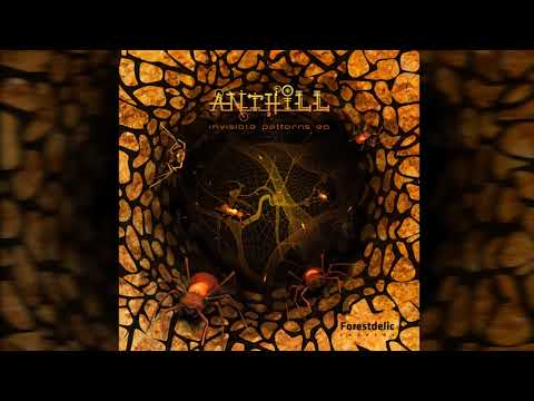 AntHill - Invisible Patterns
