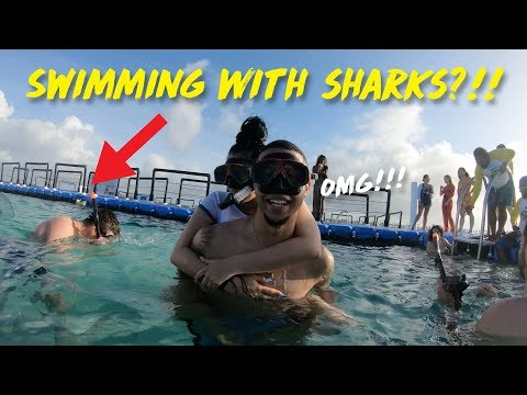 SWIMMING WITH SHARKS & STING RAYS GONE WRONG 😨 (DAY 2) | KB & KARLA
