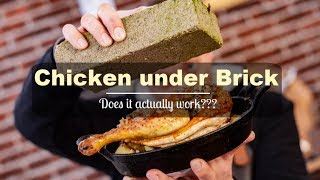 Chicken under a brick ...  does it work?  EXPERIMENT