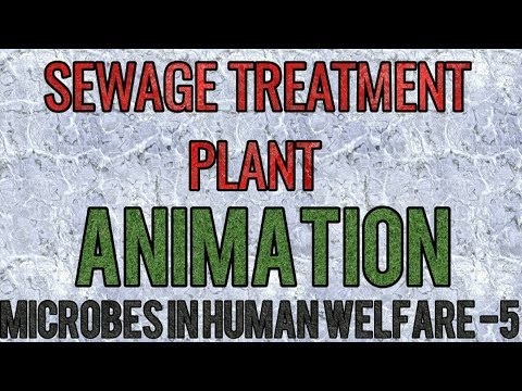 Sewage (waste water) treatment plant ANIMATION (SIMPLIFIED) for NEET and AIIMS.