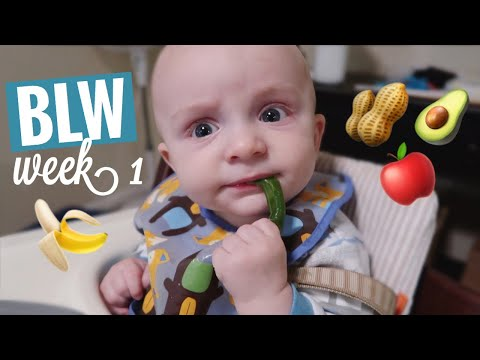 BABY LED WEANING | FIRST SOLID FOODS + PEANUT EXPOSURE