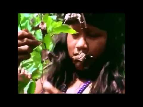 HD National geographic documentary amazon tribes festival brazil full document
