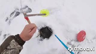 Зимняя рыбалка на жерлицы 2020-2021.Ловля щуки,отдых на базе,много холостых поклевок,отличный отдых