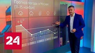 """""""Погода 24"""": непогода не уходит из Москвы"""