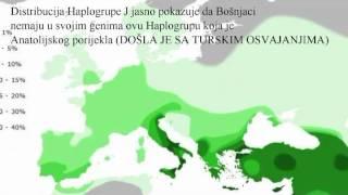 Genetika Bošnjaka