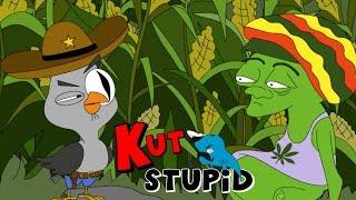 Подозрительное кукурузное поле — KuTstupid