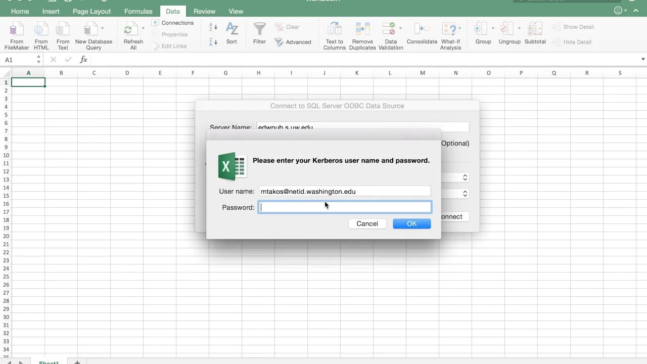 Querying the EDW with Excel 2016 for Mac
