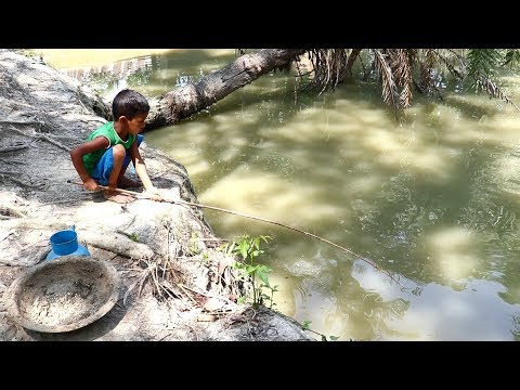 Best Fishing Video | Kids Fishing By Daily Village Life (Part-33)