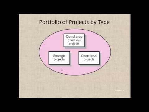 Project Management | Organization Strategy and Project Selection