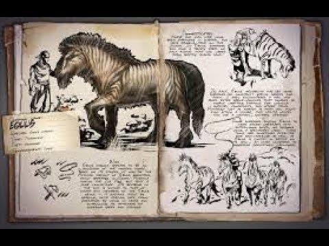 Equus Localização e