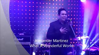 Louis Armstrong - What a Wonderful World - wyk. Alexander Martinez  (to nie jest plyback!!!)