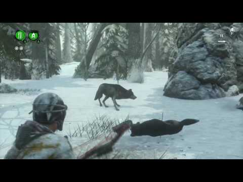 [PS4PRO FULLHD60] Rise of the Tomb Raider Endurance coop