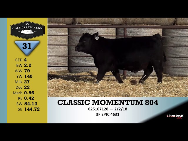Classic Angus Ranch Lot 31