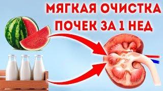 Возьмите молоко и дайте ему... 🌳 Лечение почек в домашних условиях народными средствами!