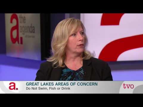 The Great Lakes: Areas of Concern