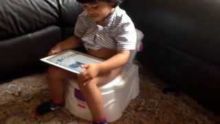 Best way to potty train a toddler (Fisher Price potty chair)