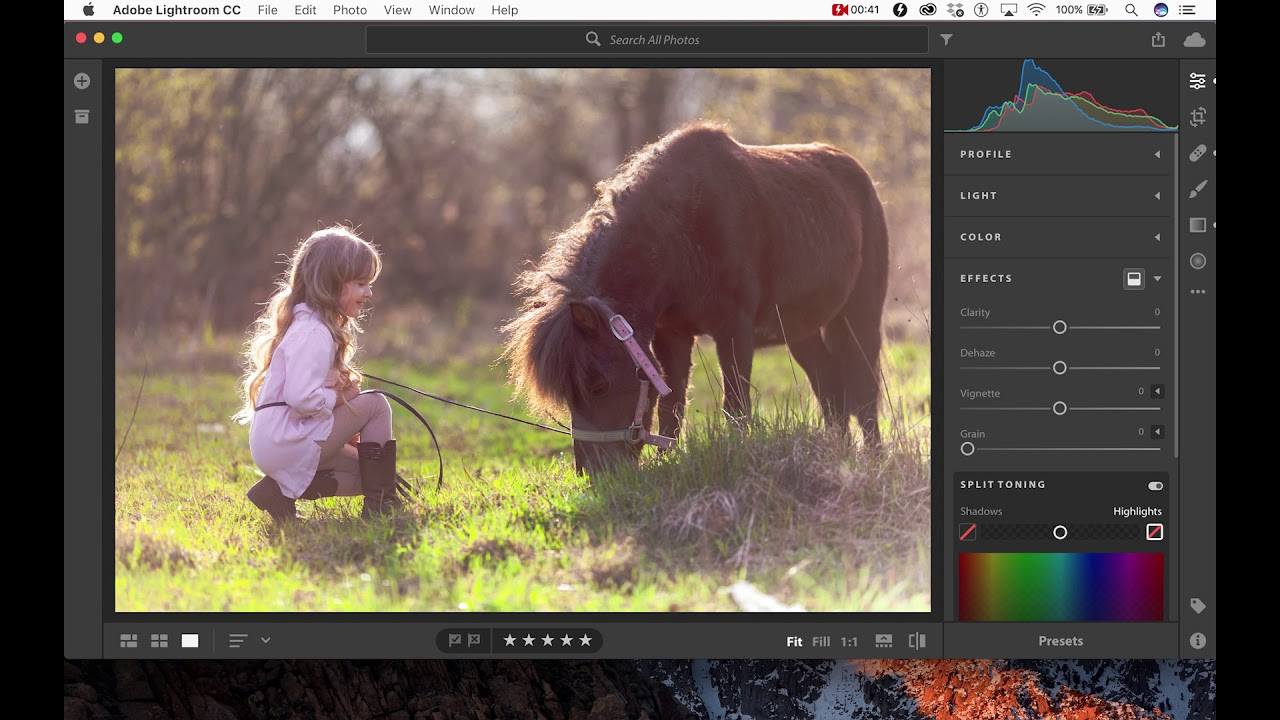 How to Install Presets into Adobe Lightroom CC