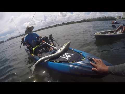 Fishing In Hobie Beach Miami FL