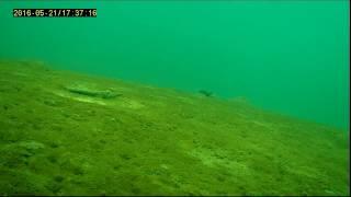 Камера для зимней рыбалки Язь-52 от производителя - у нас ...