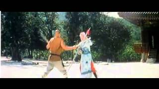 South shaolin vs North shaolin - Final fight