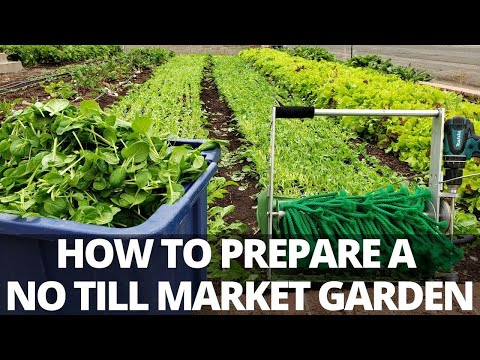 I GOT NEW LAND! How to Start a No Till Market Garden
