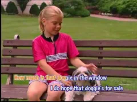 How Much Is That Doggie in The Window (Children Education Song) lyric