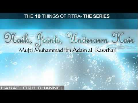 Nails, Joints, Underarm Hair - Fitra Episode 6