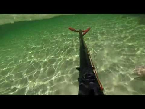 Spearfishing And Snorkelling Dunsborough W.A