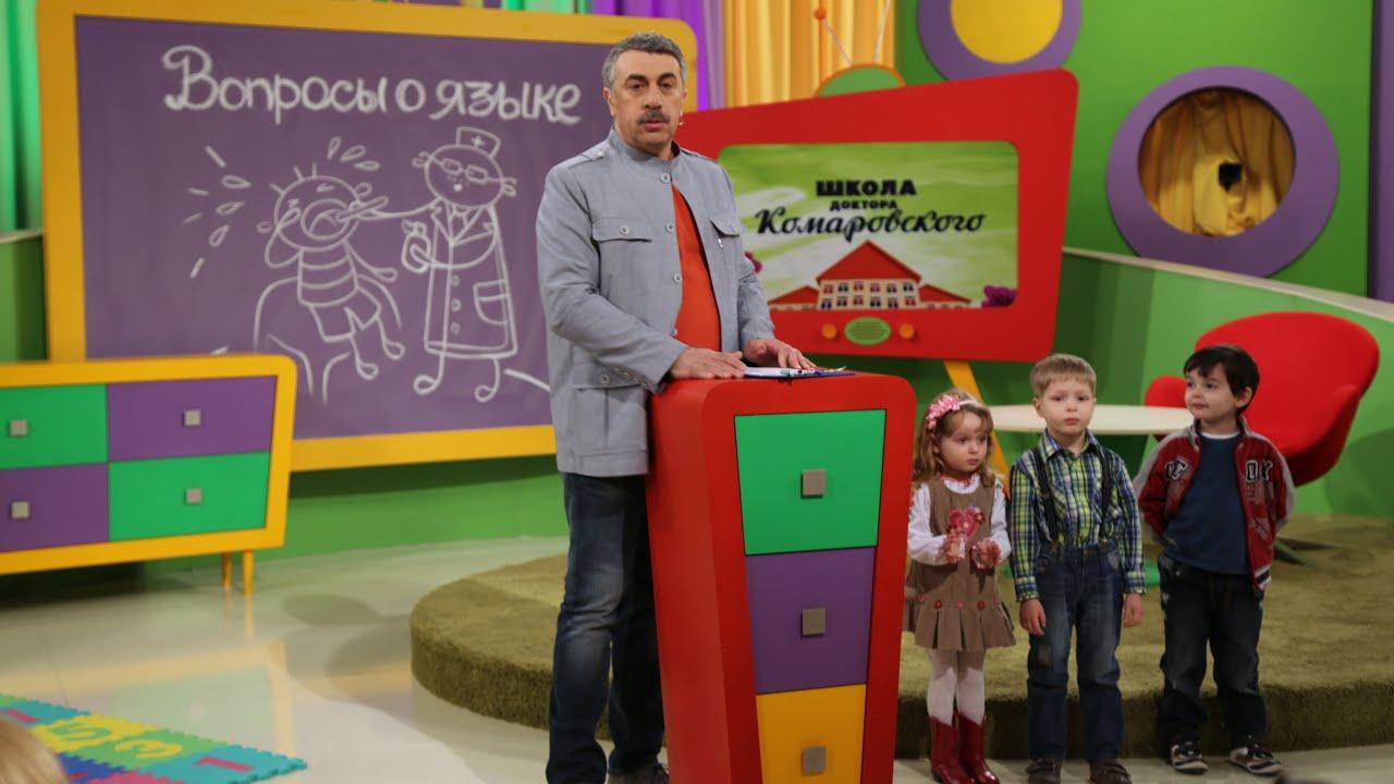 ШДК: Вопросы о языке.  Встреча с эпидемиологом. Выбор коврика для малыша. Права детей в Норвегии