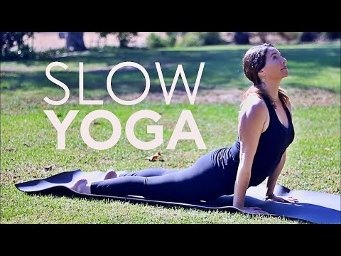 Slow Flow Yoga (Core) 20 Min Stretch | Fightmaster Yoga Videos