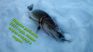 Первая рыбалка 2021 года ловим окуня и щуку в мороз