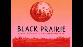 Black Prairie - Little Song Bird
