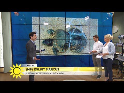 Miljöpartiet lägger ökat fokus på platshotet  - Nyhetsmorgon (TV4)