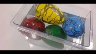 Dinazor Yumurtası