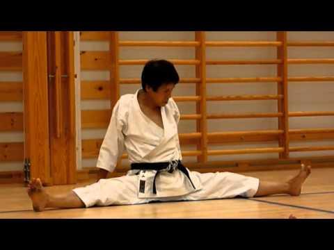 shotokan karate do complete guide