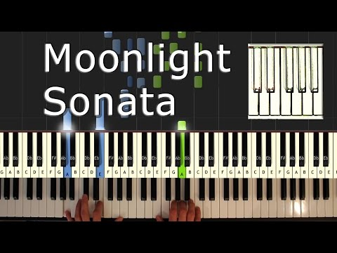 Beethoven - Moonlight Sonata - Piano Tutorial Easy - How To Play (synthesia)