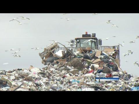 waste management yard waste